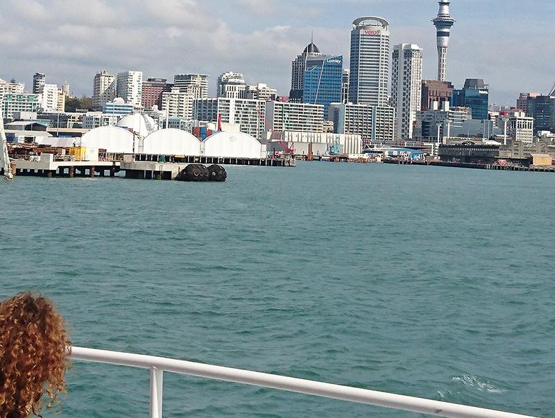 Нова Зеландия предизвикателства и реалност